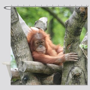 OrangUtan015 Shower Curtain