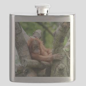 OrangUtan015 Flask