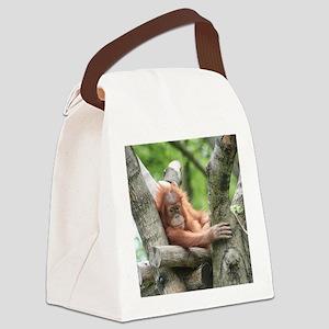 OrangUtan015 Canvas Lunch Bag