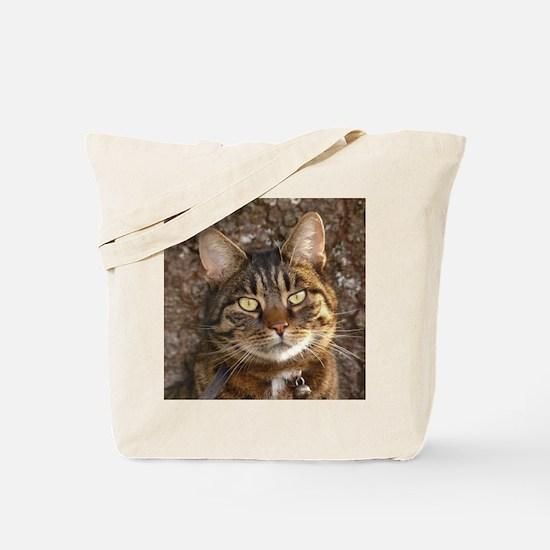 Cat002 Tote Bag