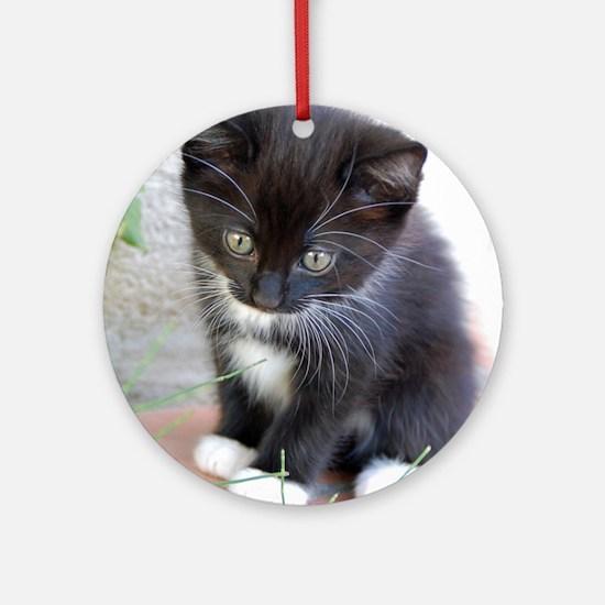 Cat003 Round Ornament