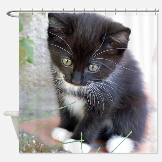 Cat003 Shower Curtain