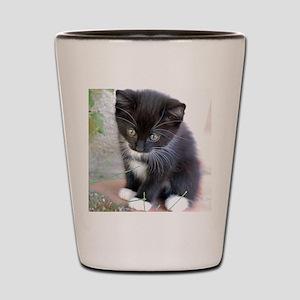 Cat003 Shot Glass