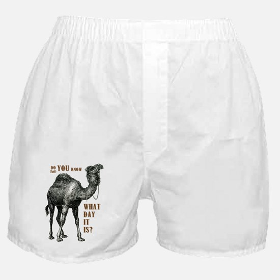 Do You Know What Day It Is Boxer Shorts