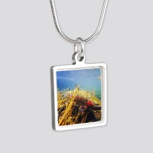 Rainbow Trout Silver Square Necklace