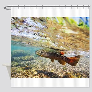 Brown Trout Shower Curtain