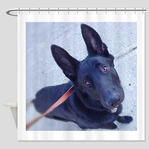 Black German Shepherd Attention! Shower Curtain