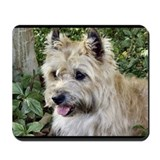 Cairn terrier Classic Mousepad