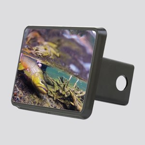 Brown Trout - Catch and Release Hitch Cover