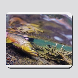 Brown Trout - Catch and Release Mousepad