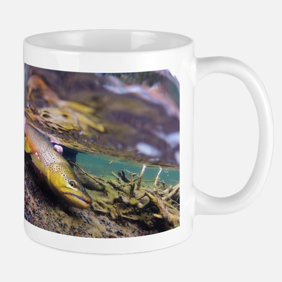 Brown Trout - Catch and Release Mugs