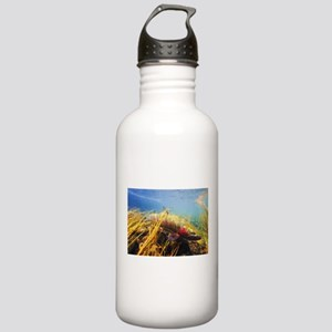 Rainbow Trout - Fly Fishing Water Bottle