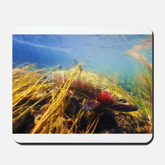 Rainbow Trout - Fly Fishing Mousepad