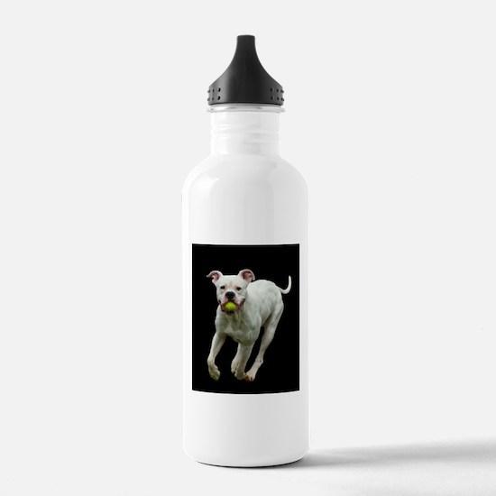 Got Ball? Water Bottle