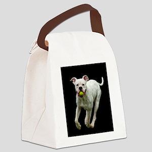 Got Ball? Canvas Lunch Bag