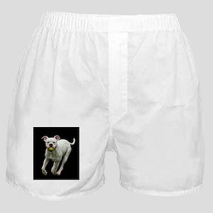 Got Ball? Boxer Shorts