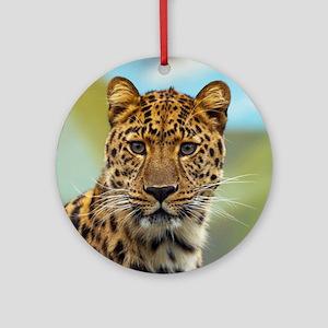 Jaguar009 Round Ornament