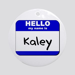 hello my name is kaley  Ornament (Round)