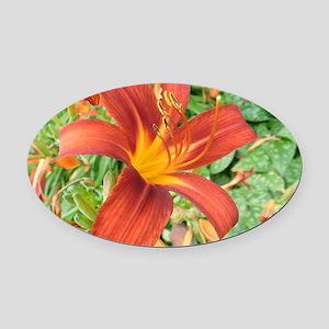 Red Macro Flower Oval Car Magnet
