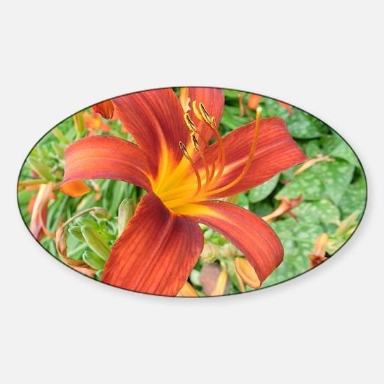 Red Macro Flower Sticker (Oval)