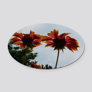 Wonderful View Oval Car Magnet