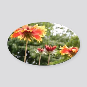 Red Blooms Oval Car Magnet