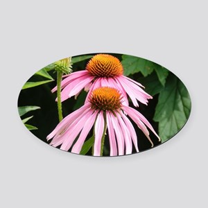 Purple Echinaceae Oval Car Magnet
