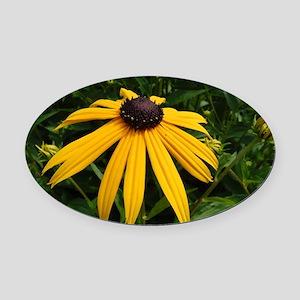 Yellow Macro Flower Oval Car Magnet