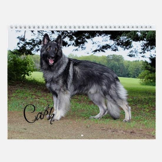 2014 Ca$H Wall Calendar