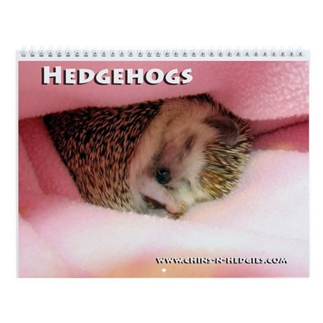 Hedgehog Wall Calendar