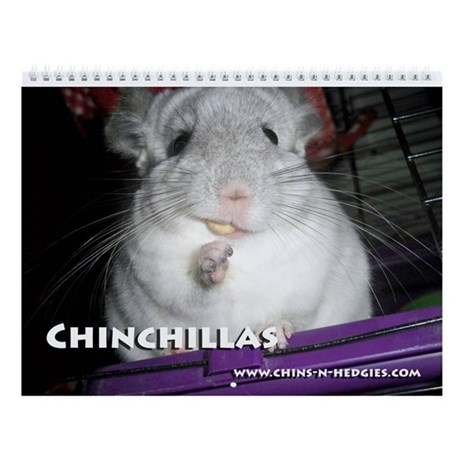 Chinchilla Wall Calendar