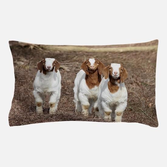 Smiling goats Pillow Case