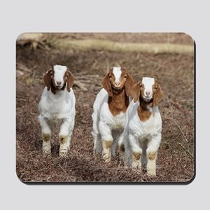 Smiling goats Mousepad