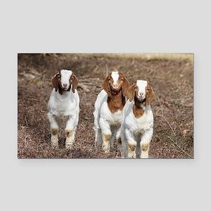 Smiling goats Rectangle Car Magnet