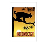 Graphic Bobcat Postcards (Package of 8)