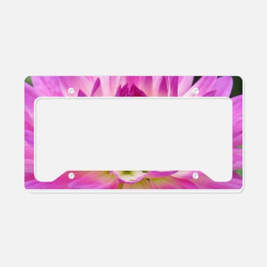 Purple Yellow Dahlia License Plate Holder