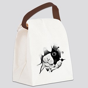 Kitten Looking Through Hole Canvas Lunch Bag