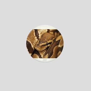 Ball Python Mini Button