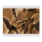 Ball python snake Fleece Blankets