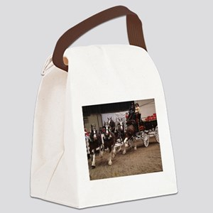 DSC04864 Canvas Lunch Bag