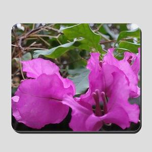 Purple Flower Mousepad