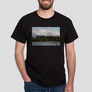 Denali, forest, river, mountains, Alaska, T-Shirt