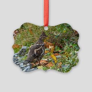 Partridge 2 Picture Ornament