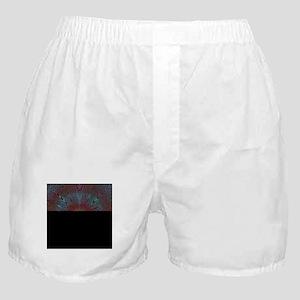 moire aqua orange Boxer Shorts