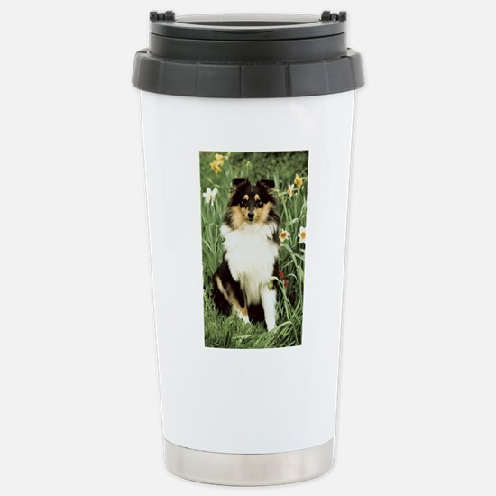 FIN-sheltie-photo-PRINT.png Stainless Steel Travel
