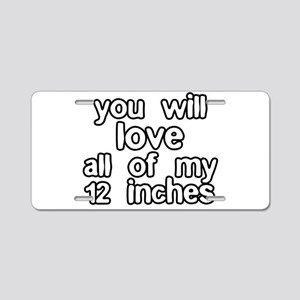 12 Inches Of Fun Aluminum License Plate