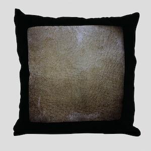 Worn 1 Throw Pillow