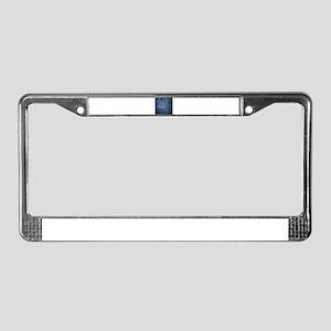 Weave 2 License Plate Frame
