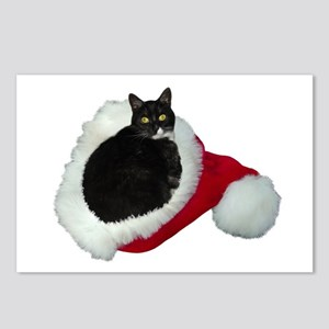 Cat Santa Hat Postcards (Package of 8)