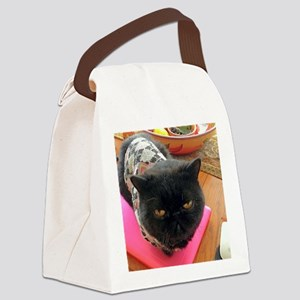 His Grace Mr. Cat Dmitry Canvas Lunch Bag